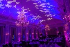Zonic Music -  Dekorationslys uplight i København
